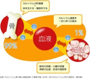 %e3%82%ab%e3%83%ab%e3%82%b7%e3%82%a6%e3%83%a0%e3%81%a8%e9%aa%a8