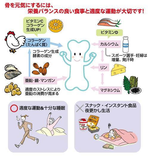 ケガの予防と回復に有効な栄養素